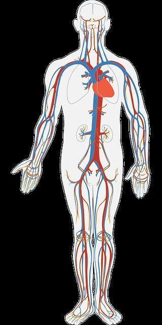 大動脈 解離 後遺症